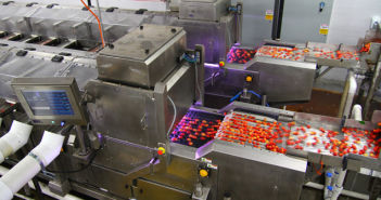bluberry-sorting-machinery