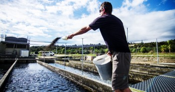 New Zealand government, research and commercial groups are aligning with international salmon experts to make salmon farming here even more sustainable.