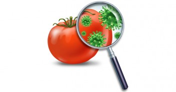 Food safety has many ingredients. Robust biological science on food hazards is one. Supply chain integrity is another.